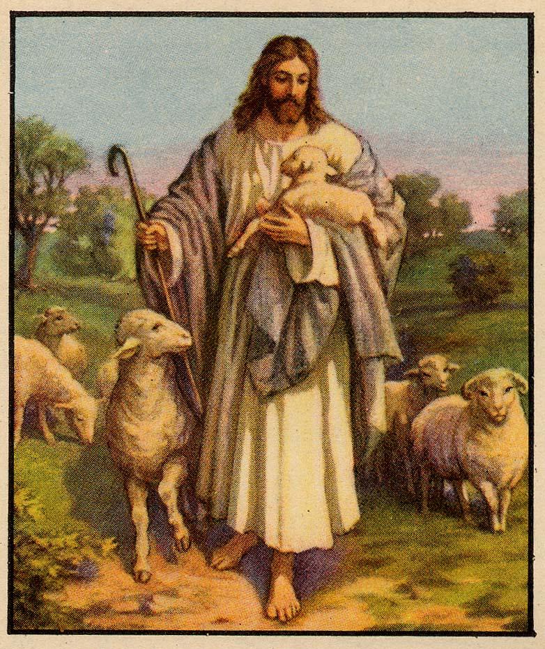 ���� ��� ������ ���� ����.  �����:Jesus%20the%20good%20shepherd[1].jpg �������:465 �����:248.4 �������� ������:1625